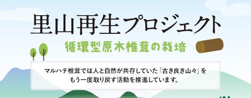 里山再生プロジェクト(循環型原木椎茸の栽培)