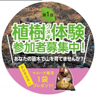 植樹体験受付フォーム